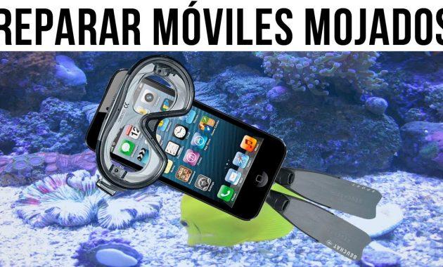 mi celular se cayo al agua y no se ve la pantalla
