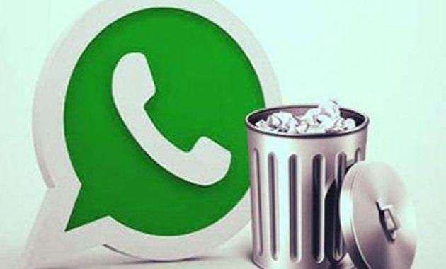Cómo eliminar notas de voz de whatsapp en Iphone
