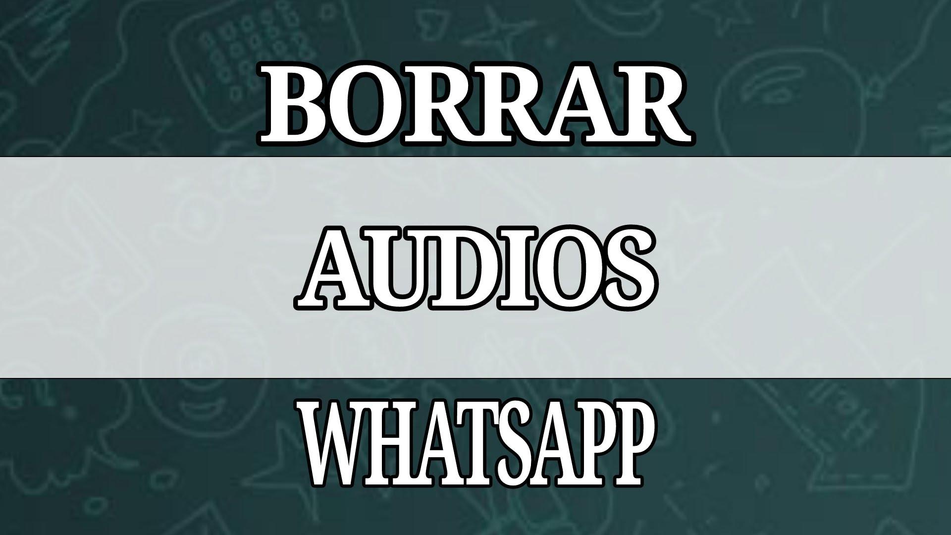 Cómo borrar los audios de Whatsapp en Iphone